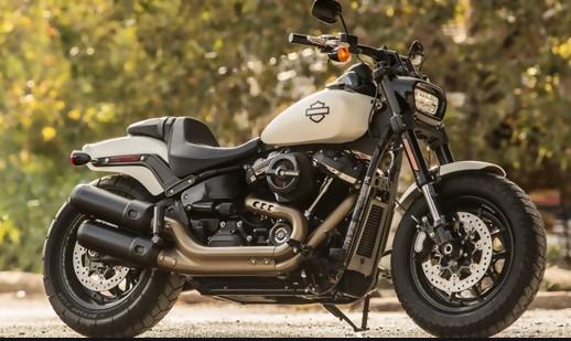 Harley Cruiser vs Touring