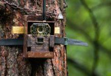 Black Friday Deals Trail Cameras