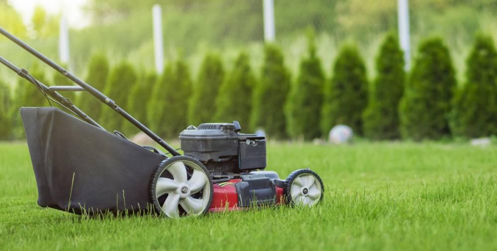 Black Friday Electric Lawn Mower